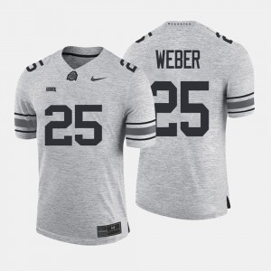 Mens Buckeyes #25 Mike Weber Gray Gridiron Gray Limited Gridiron Limited Jersey 166735-207